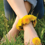 Постер, плакат: Legs of young woman adorned dandelions