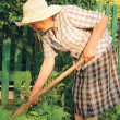 Old woman working in the garden — Stock Photo