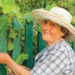 mulher de idade trabalhando no jardim — Foto Stock