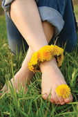 Legs of young woman adorned dandelions — Stock Photo