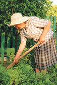 Old woman working in the garden — Stockfoto