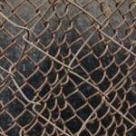 Background from mesh rabitz — Stock Photo #1438155