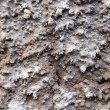 Background frome cracked plaster — Stock Photo