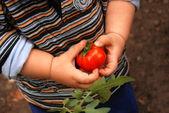 Kind in de tuin — Stockfoto