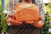 Newly-baked bread — Stock Photo