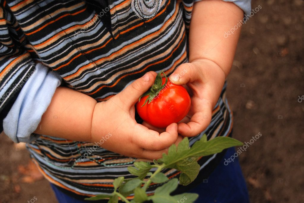 Child working in the garden — Stock Photo #1522445