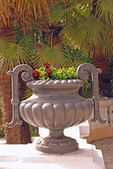 Pot with flowers in old park in Sochi city, Russia — Stock Photo