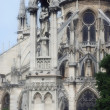 Stock Photo: Notre Dame of Paris