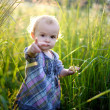 Stock Photo: Little baby in a meadow