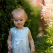 Little baby in an overgrown grass — Stock Photo