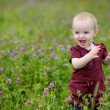 Happy little baby girl in a meadow — Stock Photo