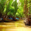 Stock Photo: Mekong Delt- waterway through jungle a