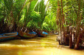 Mekong Delta - waterway through jungle a — Stock Photo