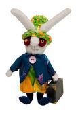 Funny rabbit — Stock Photo
