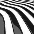 Curves_zebra — Stock Photo