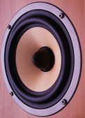 Speaker — Stock Photo