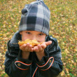 Portrait of the boy with autumn leaves i — Stock Photo #1559274