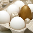 Royalty-Free Stock Photo: Gold egg.