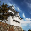 Nagoya Castle — Stock Photo #1237579