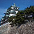 Nagoya Castle — Stock Photo