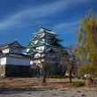 Nagoya Castle — Stock Photo #1237776