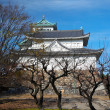 Stock Photo: Nagoya Castle