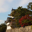 Nagoya Castle — Stock Photo #1237871