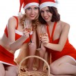 Celebrating Christmas — Foto de Stock