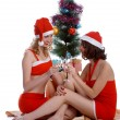 Celebrating Christmas — Stock Photo #1293749