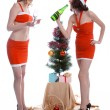 Celebrating Christmas — Stock Photo #1294142