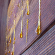 Stock Photo: Drops of resin on old wall