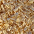 Shavings - Stock Photo