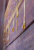 Drops of resin on old wall — Stock Photo