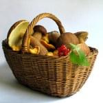 Basket full of mushrooms and berries — Stock Photo