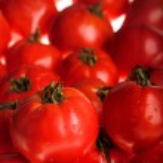 Tomato — Stock Photo #1196652