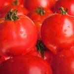 Tomato — Stock Photo #1196674