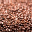 Coffee bean — Stock Photo #1198553