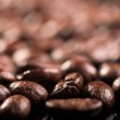 Coffee bean — Stock Photo #1198560