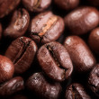 Coffee bean — Stock Photo #1198565
