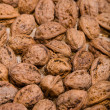 Walnut — Stock Photo #1198734