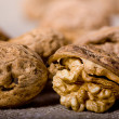 Walnut — Stock Photo #1198813