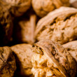 Walnut — Stock Photo #1198835