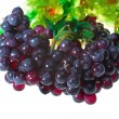 Royalty-Free Stock Photo: Grape