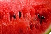 Water-melon — Stock Photo
