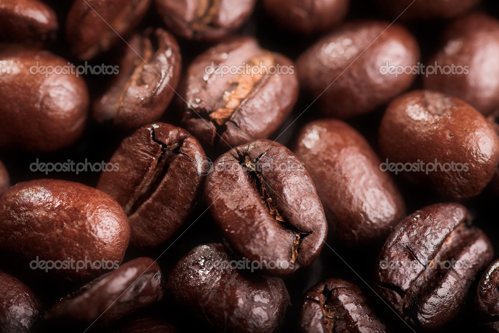 Close up photo of coffee bean background — Stock Photo #1198565