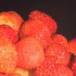 Strawberries — Stock Photo #1200975