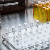 微生物学科学 — 图库照片