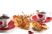Autumn tea-drinking — Stock Photo