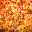 Pizza background -  