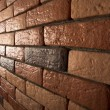 Brick wall — Stock Photo #1521170